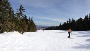 Spruce Peak