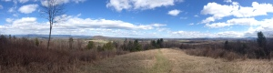 View from Mt. Philo