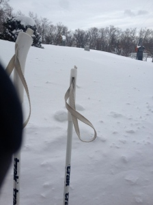 I loved XC skiing after Nemo